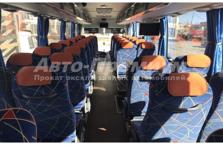Bus Yutong 51 person